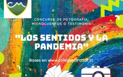 Concurso de Fotografía, microcuentos o testimonio: «Los sentidos y la Pandemia»